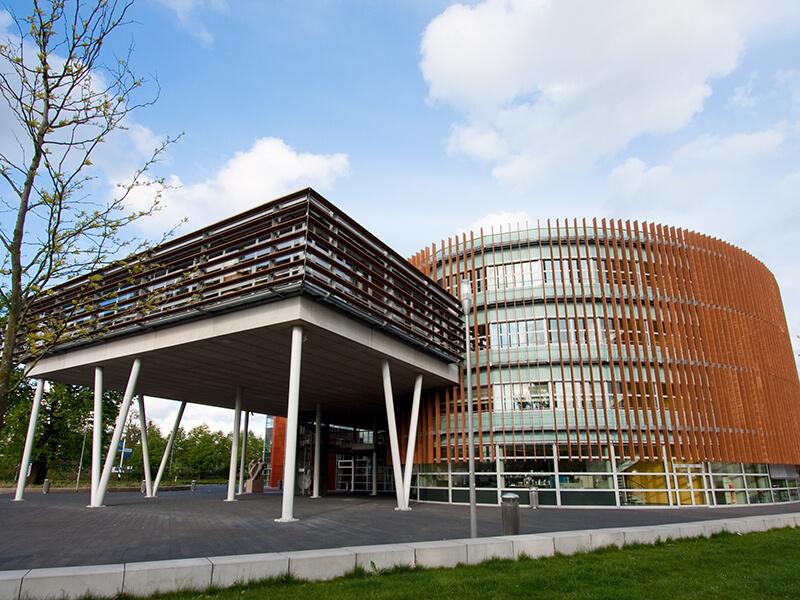 Đại học Witterborg